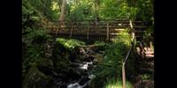 bridge over Stanley Ghyll